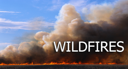 Wildfire Safety - Plan & Be Ready