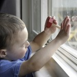 Window Safety Task Force