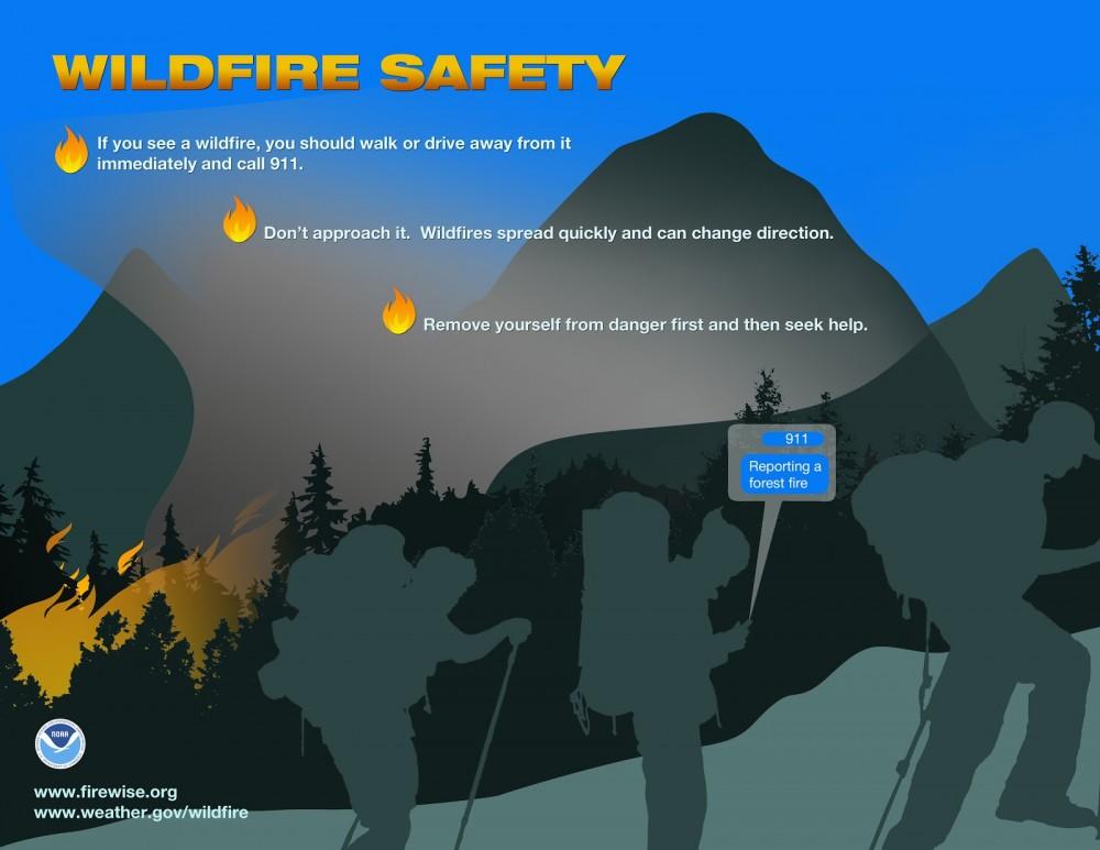 wildfire-spot-it