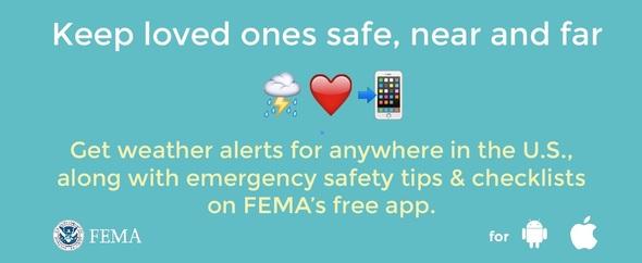 FEMA-App-3