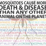 Today is World Malaria Day.
