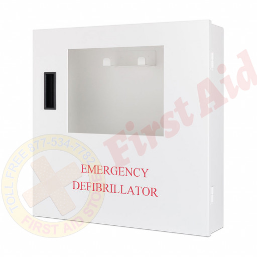 The Defibtech Wall Mount Case