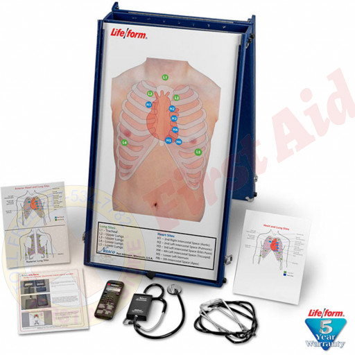 The Life/form® Auscultation Practice Board