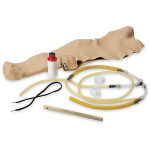 The Life/form® Replacement Skin and Vein Set for Heart Catheterization