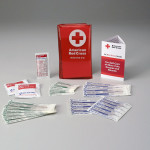 The American Red Cross Brand Mini First Aid Kit w/ Tri-Fold Vinyl Case