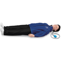 The Life/form® Sanitary CPARLENE Basic Full Mannequin