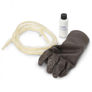 The Life/form® Advanced IV Hand Replacement Veins
