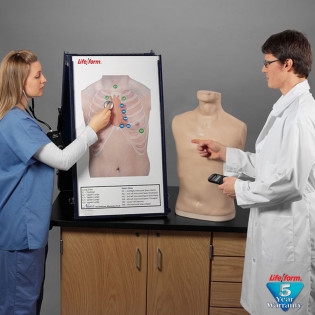 The Life/form® Complete Auscultation Training Station