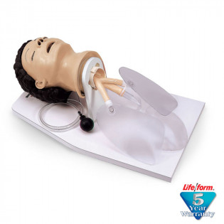 The Life/form® Adult Airway Management Trainer with Stand