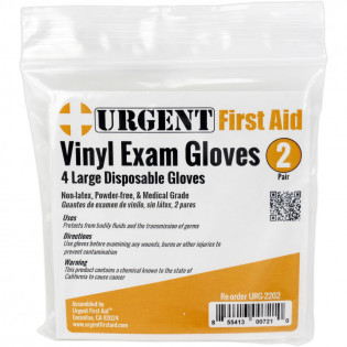 The Disposable Gloves, Large, 2 Pair Per Bag